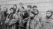 Campos de concentración y trabajo