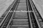 Kala Rohler Photography