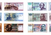 Hungary's currency is Hungarian forint