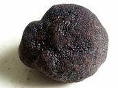 Un truffe noir