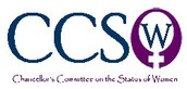 CCSW: Staff Concerns