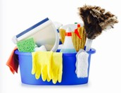 Light Housekeeping and Childcare Services