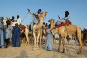 Who were the Berbers?