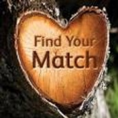 Our company finds your ideal match!