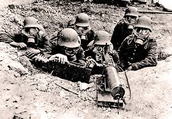 Why world war started