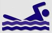 Swim Team Sign-Ups