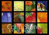 Welcom to Cohn-Stone Studios