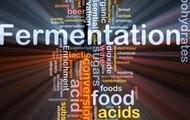 fermenation