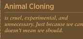 Argument against animal cloning