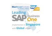 Blue Ocean Systems Pte Ltd