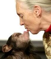 ג'יין גודול מנשקת קוף