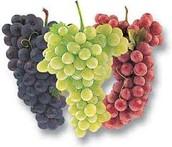 Las uvas - Grapes $1.25