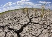 sequía en nuestro planeta