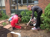 Grade 4 Students Yank Roots
