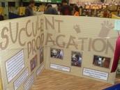 Mini-Booths at GA National Fair