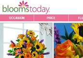 Blooms Today Review Bonus With Blooms Today Coupon