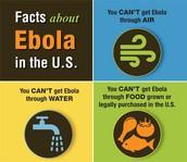 CDC Information