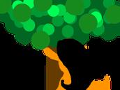 Salmanca Tree Hiddle