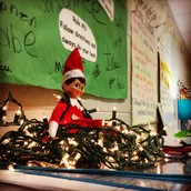 Chandler the Elf has returned!