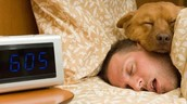 Trouble falling asleep?