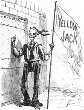An Overview of Yellow Fever