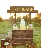 Example: Lemonade stand and Catering