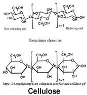 Polysaccharide