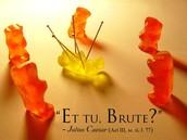 """""""Et tu Brute?""""     (Act 3 Scene 1)"""
