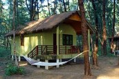 Shacks, Lodges & Log huts