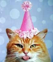 BIRTHDAY?!