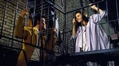 What is West Side Story About?