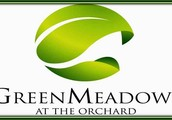 GREENMEADOWS AT THE ORCHARD 2, DASMARIÑAS CAVITE