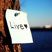 Requirements to Live