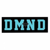 Who IS Diamond Supply Co?