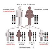 Inheritance Diagram