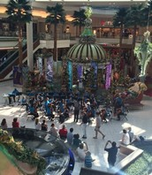 Symphony Orchestra performs at the Gardens Mall