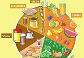 NUTRICIÓN PRIMARIA VIU - EDUCACIÓN FÍSICA