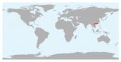 Location & Dates