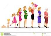 Adult Women Development