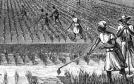 Slavery..