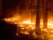 Compare and Contrast Rainstorms and Wildfires