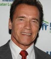 Grandpa A1 (Arnold Schwarzenegger)