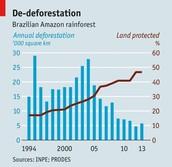 deforestation / endangering animals