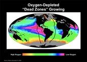 Oxygen Catastrophe