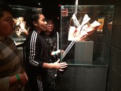 More Body Worlds