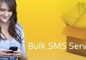 CSS Infotech Best Bulk SMS Service Company