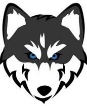 Husky News