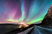 The Arctic Lights