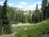 Ridge Lake Trails