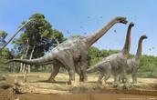 Brachiosaurus Description
